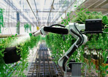 ¿Cómo está afectando la crisis de la COVID-19 al modelo de negocio de la agricultura?